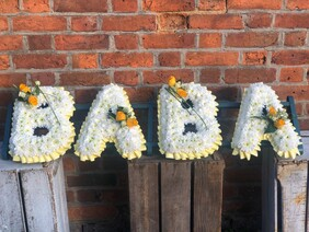 Personal Tribute   BABA