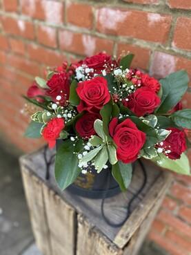 Red Rose Velvet Luxe